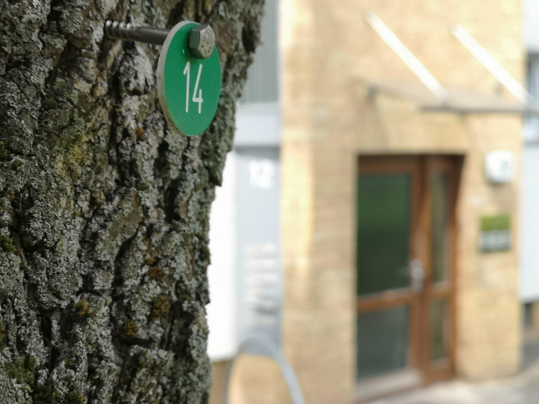 Nummerierter Baum